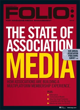 issue-2013-11.jpg