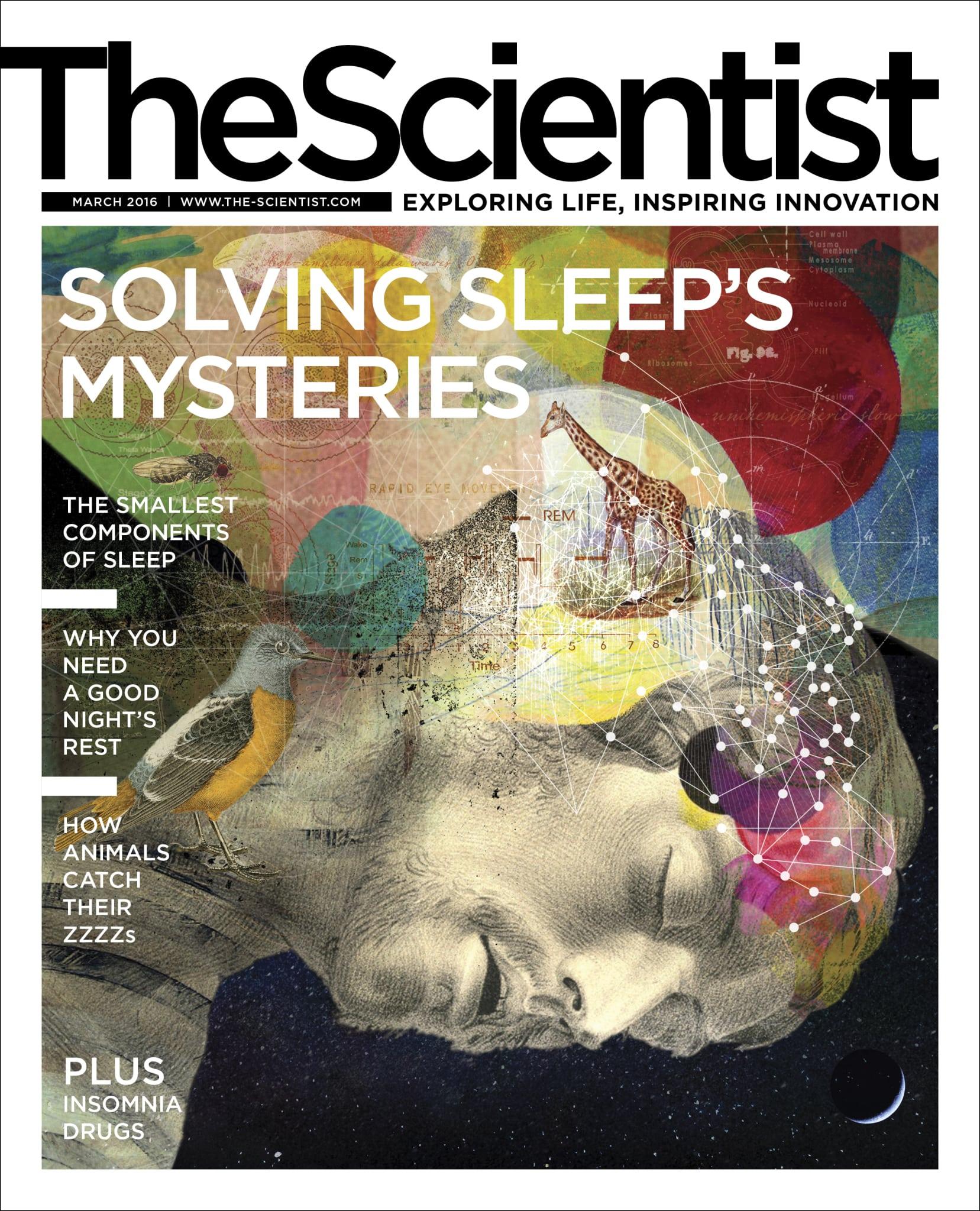 THE_SCIENTIST_B2B_Full_Issue_Eddies