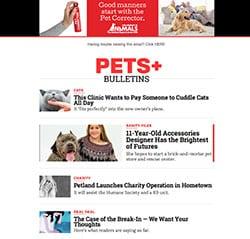 Pets Plus_Eddies Digital_2