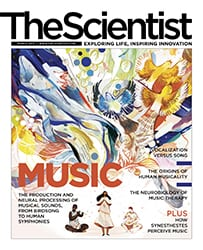 The Scientist_Eddies_2